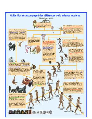 Évolution illustrée des mammifères jusqu'à l'apparition de l'homme.